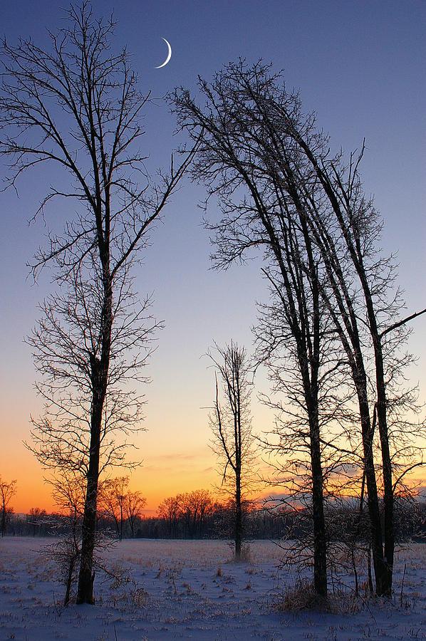 Dusk Photograph - Winter At Dusk by Randy Pollard