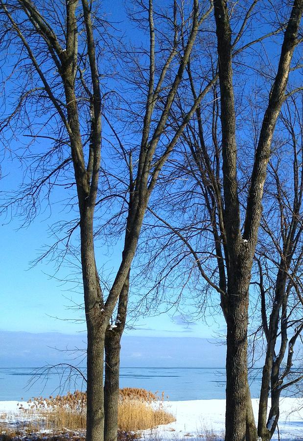 Winter Photograph - Winter At Lake Huron by Rhonda Humphreys