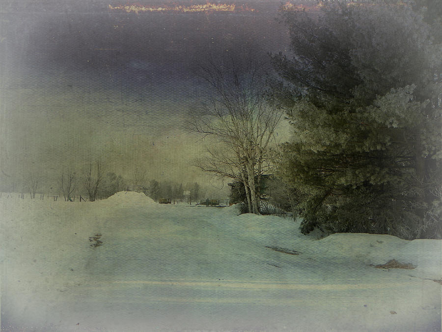 Winter Atmosphere  Photograph by Dianne  Lacourciere