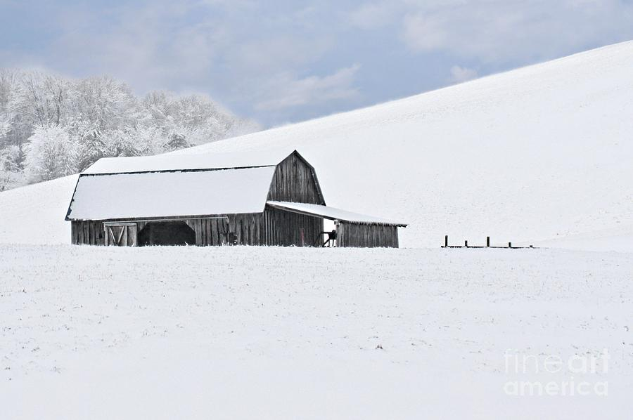 Snow Photograph - Winter Barn by Benanne Stiens