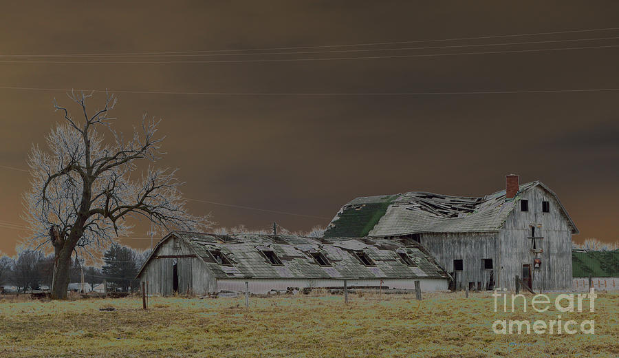 Winter Photograph - Winter Barns by Alys Caviness-Gober