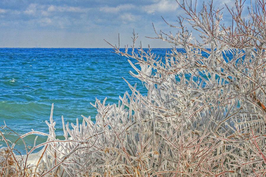 Beach Photograph - Winter Beach by Michael Allen