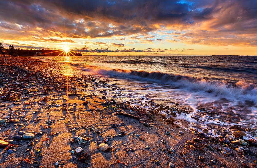 Washington Photograph - Winter Beach Sunset by Alexis Birkill