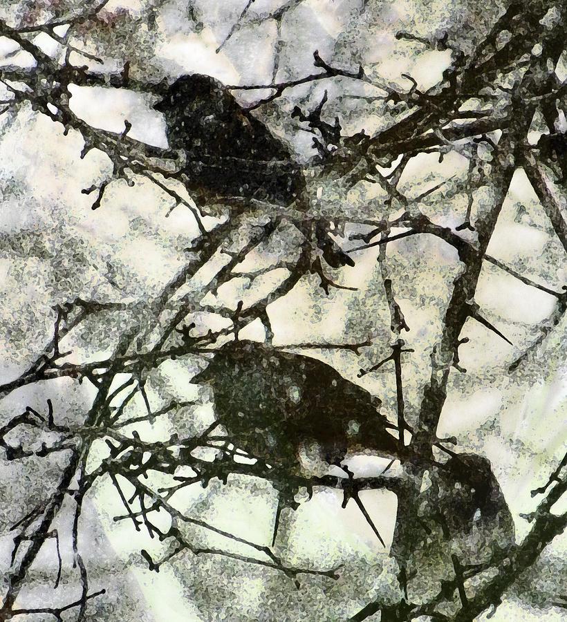 Birds Photograph - Winter Birds by John Goyer