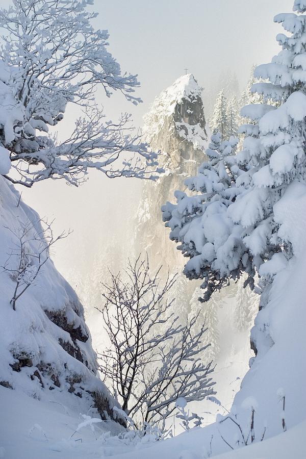 Winter Photograph - Winter by Bjoern Kindler