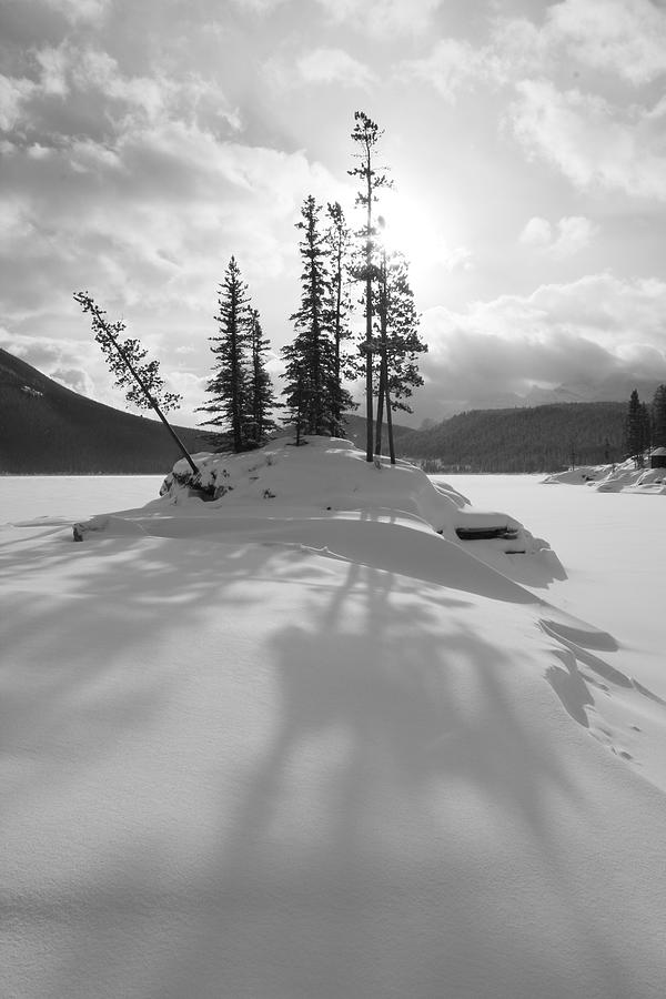 Winter Snow Silhouette - Black And White - Lake Minnewanka, Alberta Photograph