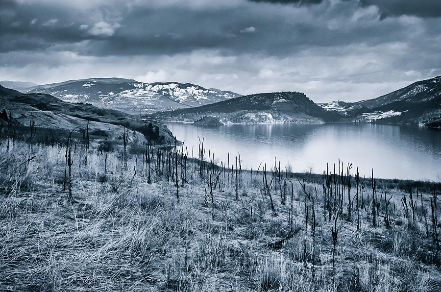 Black & White Photograph - Winter Blues by Rod Sterling