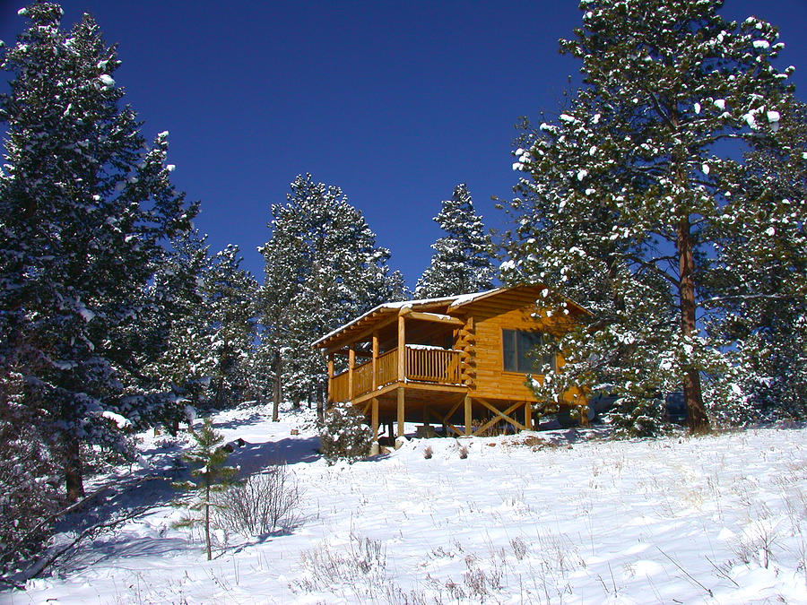 Winter Cabin Photograph by Shane Bechler