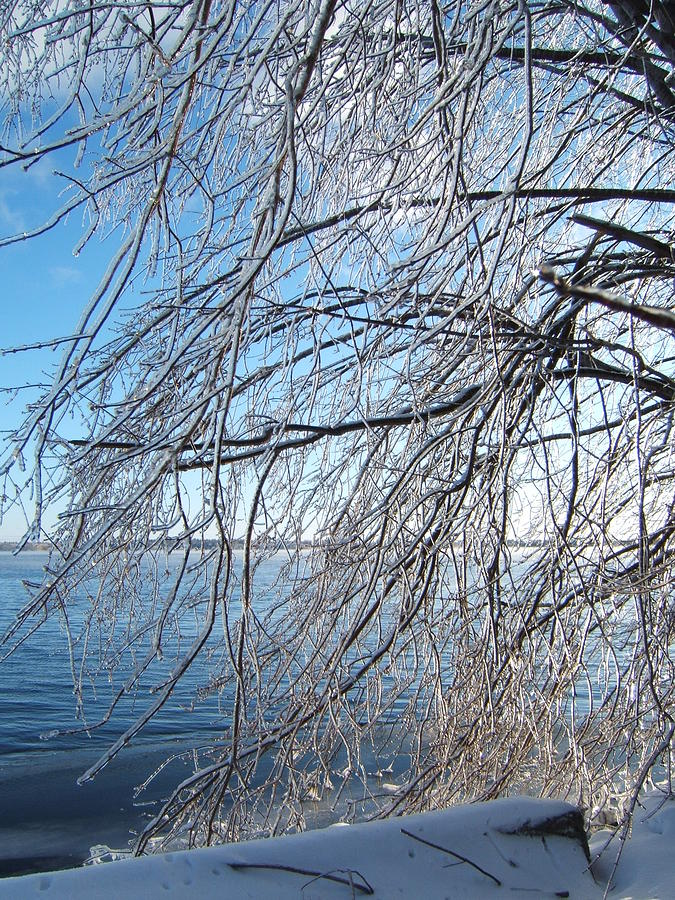 Winter Photograph - Winter Chill by Margaret McDermott