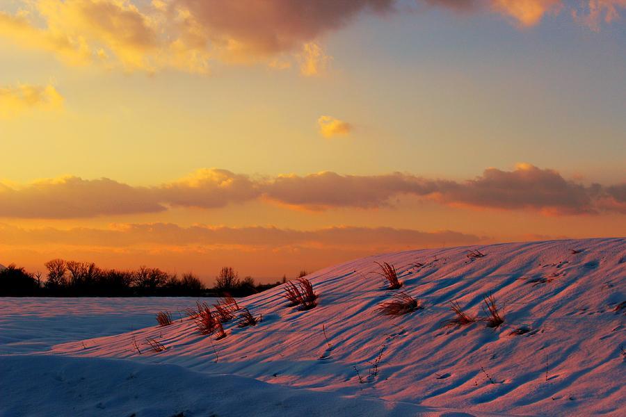Sunset Photograph - Winter Color by Candice Trimble