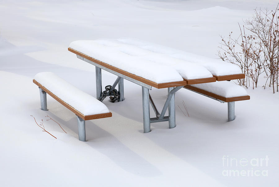 Picnic Photograph - Winter Cover by Mike  Dawson