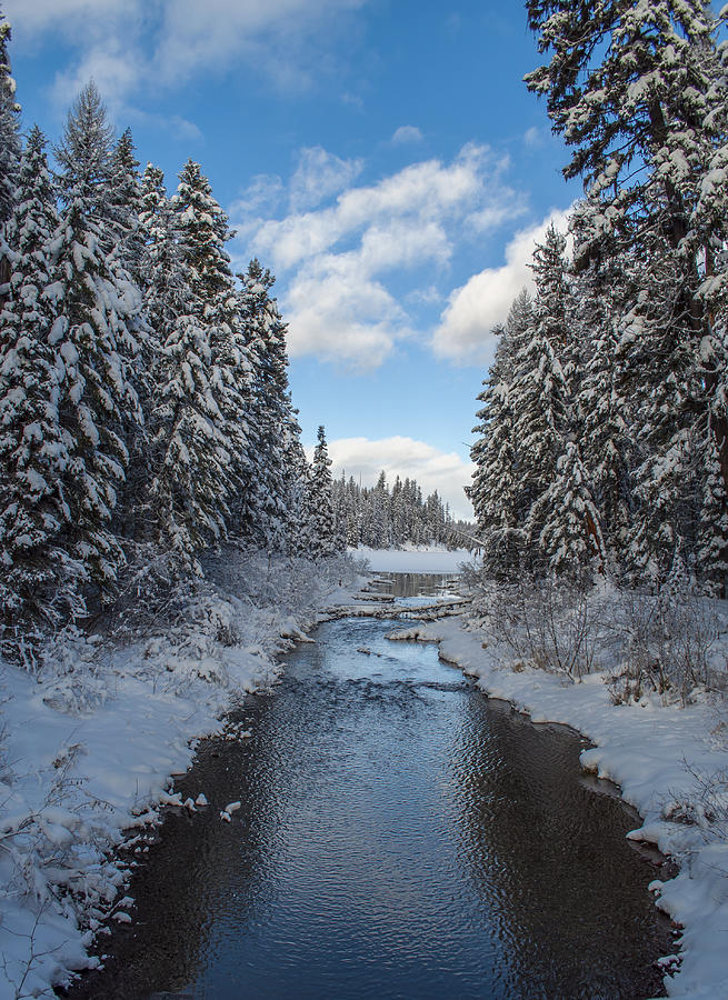 Montana Photograph - Winter Creek by Fran Riley