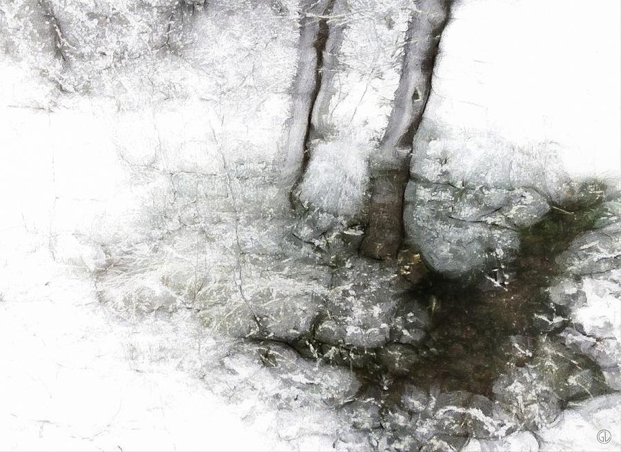 Natue Digital Art - Winter Creek by Gun Legler