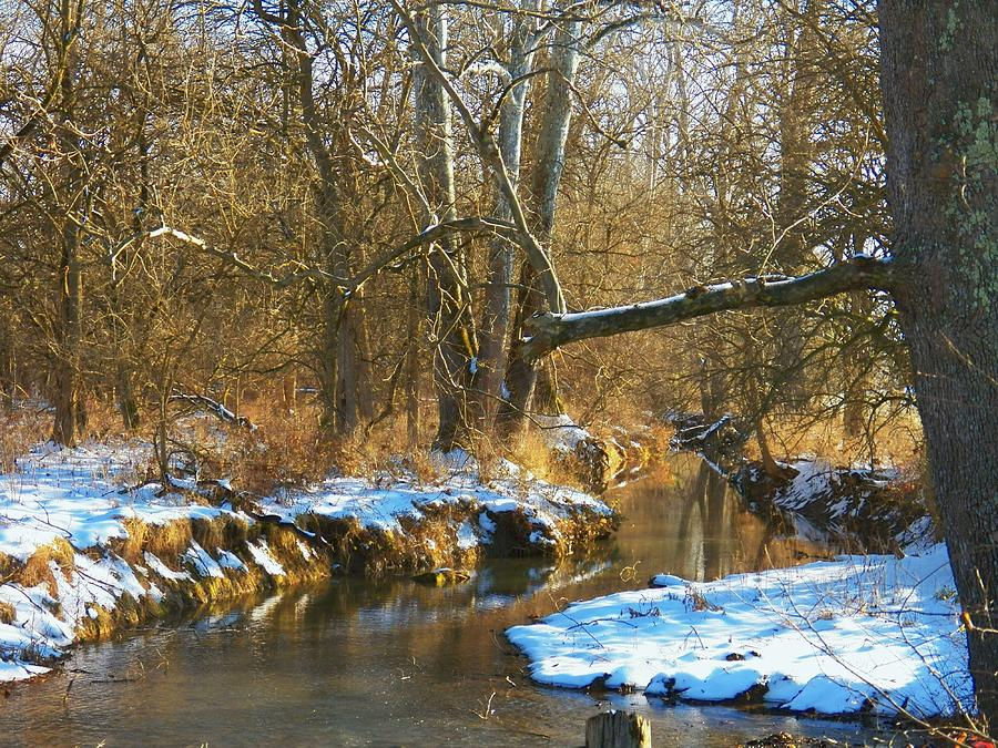 Water Photograph - Winter Creek by Joyce Kimble Smith