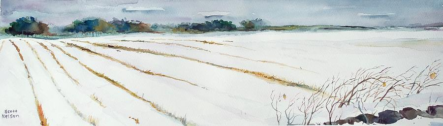 Snow Painting - Winter Crop by Scott Nelson