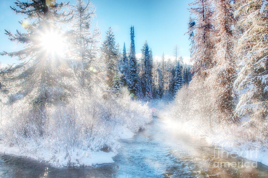 Winter Delight on Lolo Creek by Katie LaSalle-Lowery
