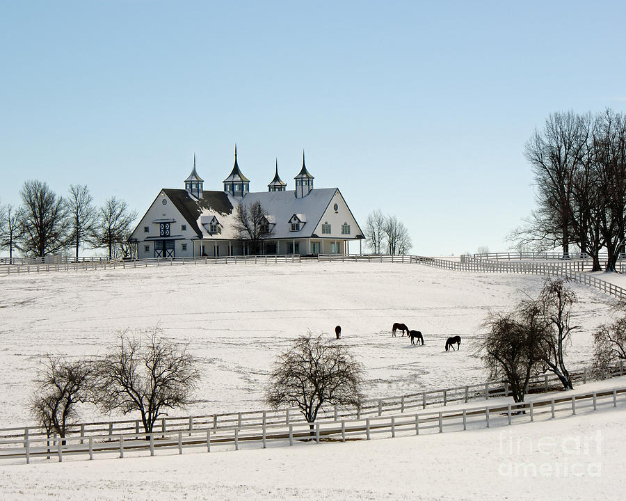 Kentucky Photograph - Winter Dream by Roger Potts