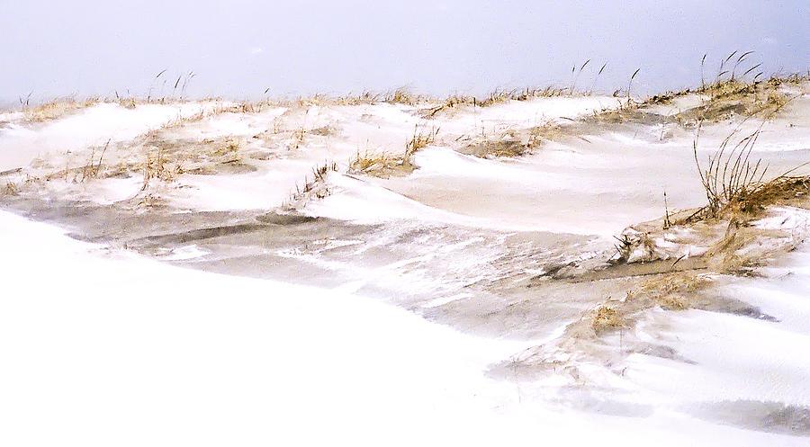 Jersey Shore Photograph - Winter Dunes by William Walker
