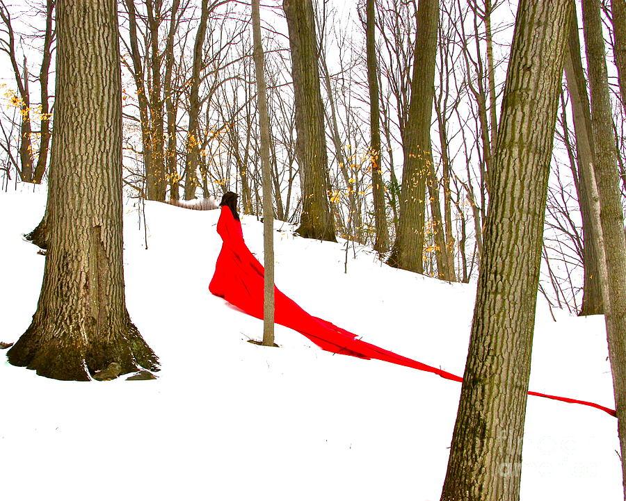 Winter Photograph - Winter Empress by Shakaya Leone