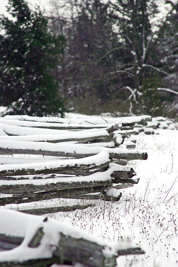 Fence Photograph - Winter Fence by Ty Helbach