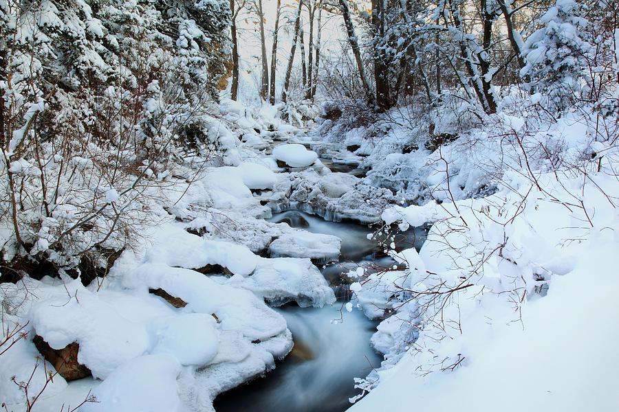 Nature Photograph - Winter Flow by Darryl Wilkinson