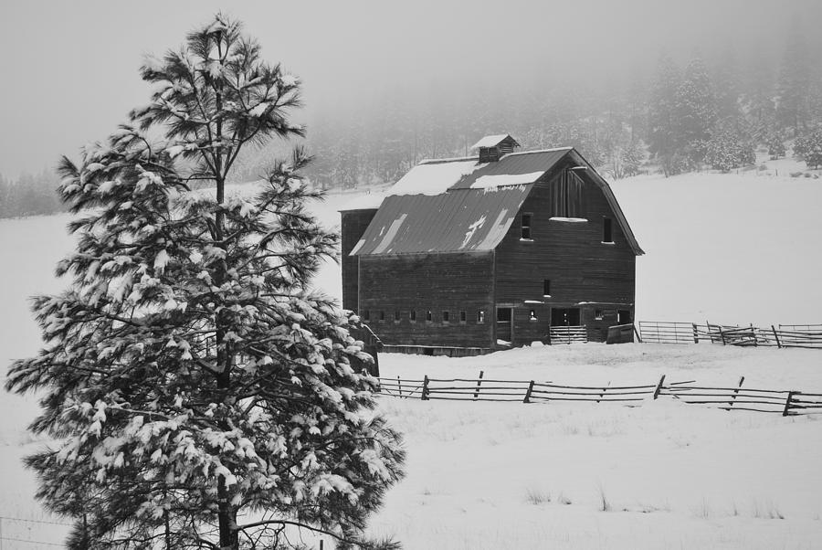 Barn Photograph - Winter Haven by Duane King