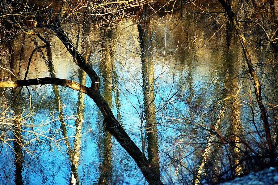Blue Photograph - Winter Hike by Cara Moulds
