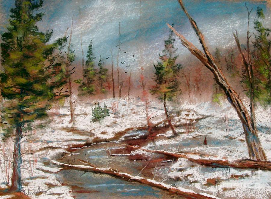 Landscape Pastel - Winter In Canane by Bruce Schrader