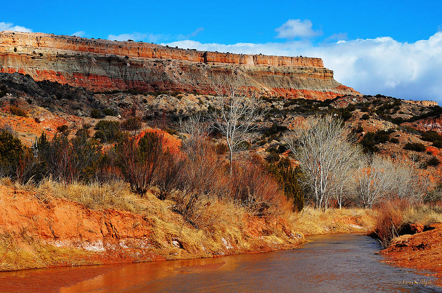 Winter In Palo Duro Canyon Photograph By Karen Slagle