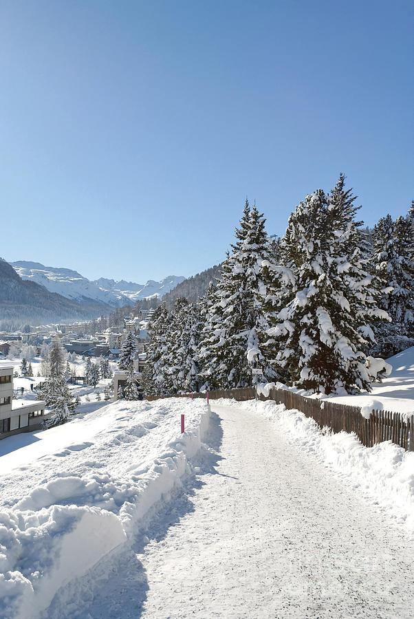 Switzerland Photograph - Winter In Switzerland by Design Windmill