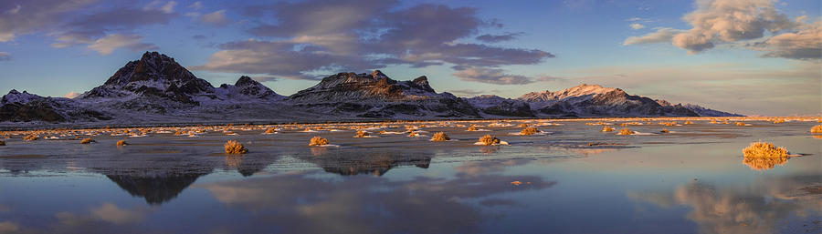 Yellow Photograph - Winter In The Salt Flats by Chad Dutson