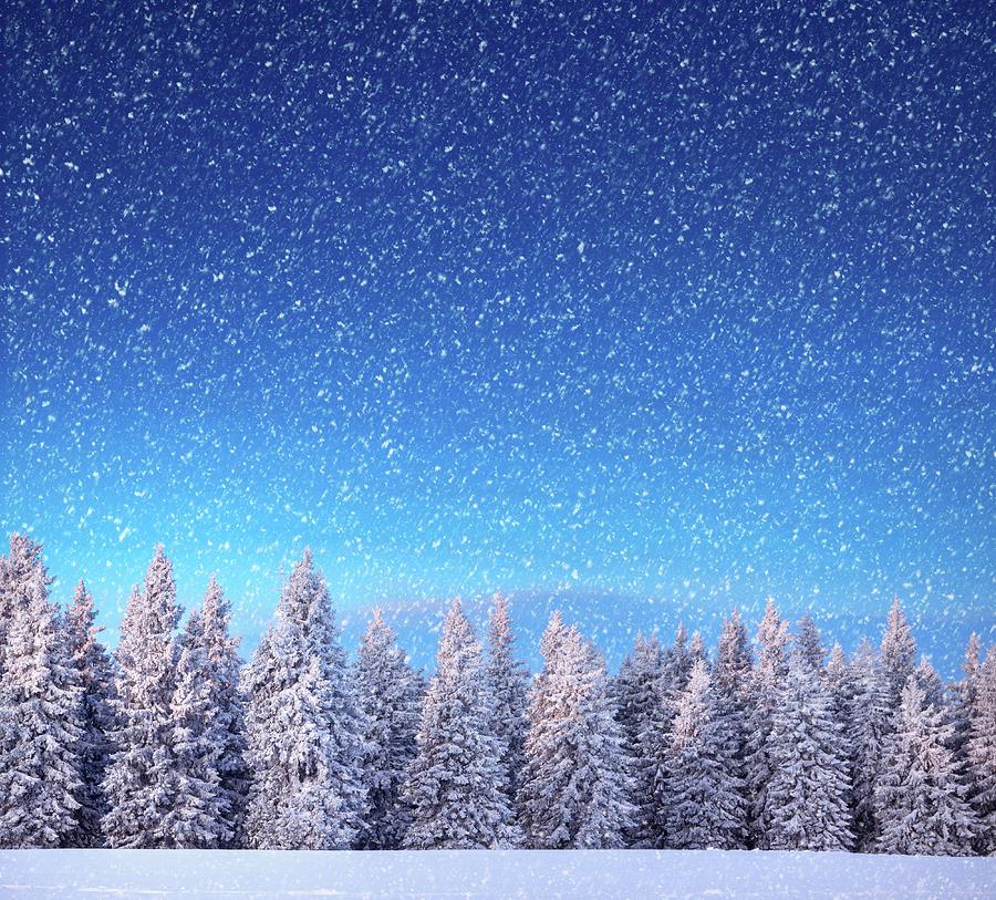 Winter Landscape Photograph by Borchee