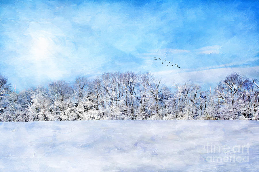 Beautiful Photograph - Winter Landscape by Darren Fisher
