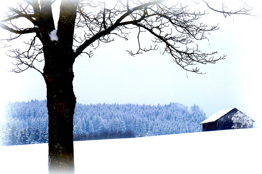 Winter Photograph - Winter Landscape In Bavaria by The Creative Minds Art and Photography