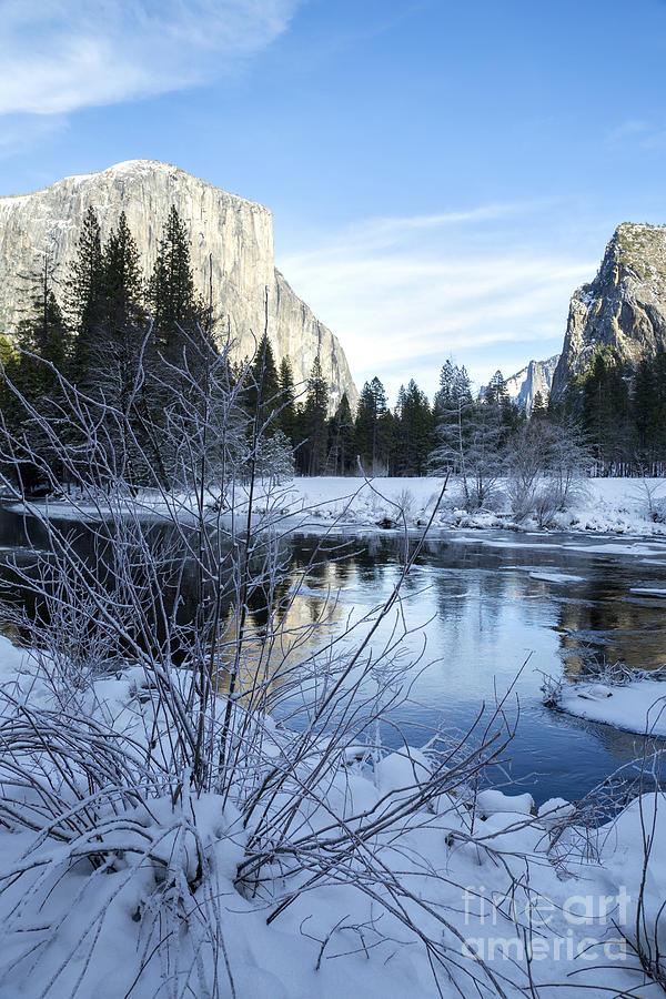 Nature Photograph - Winter Landscape In Yosemite California by Julia Hiebaum