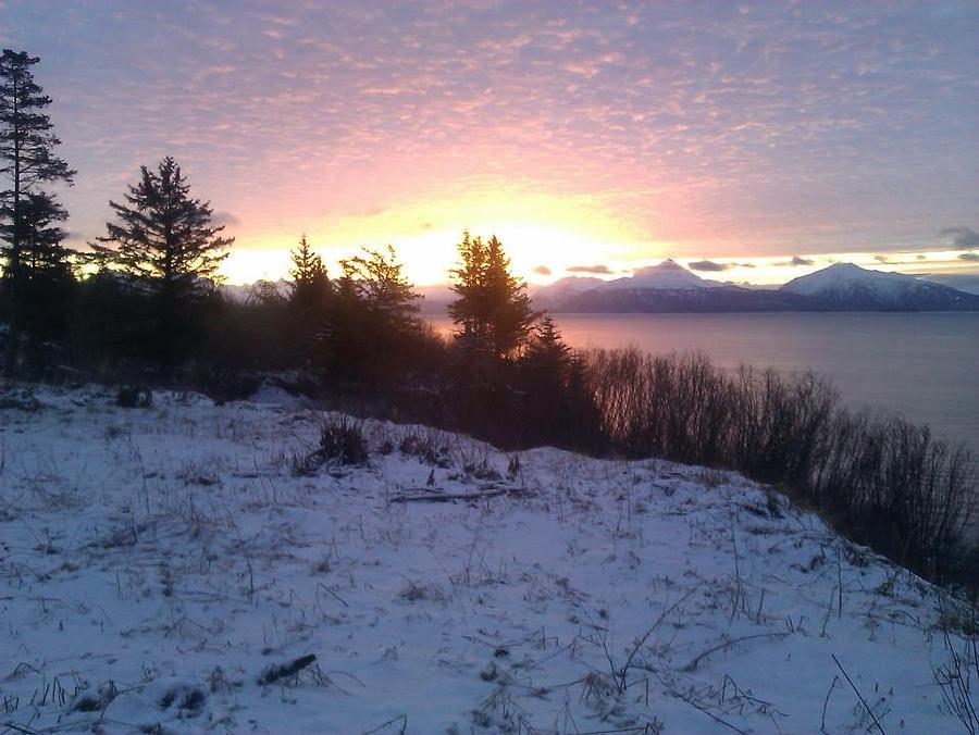 Winter Morn Digital Art by Susan Mumma