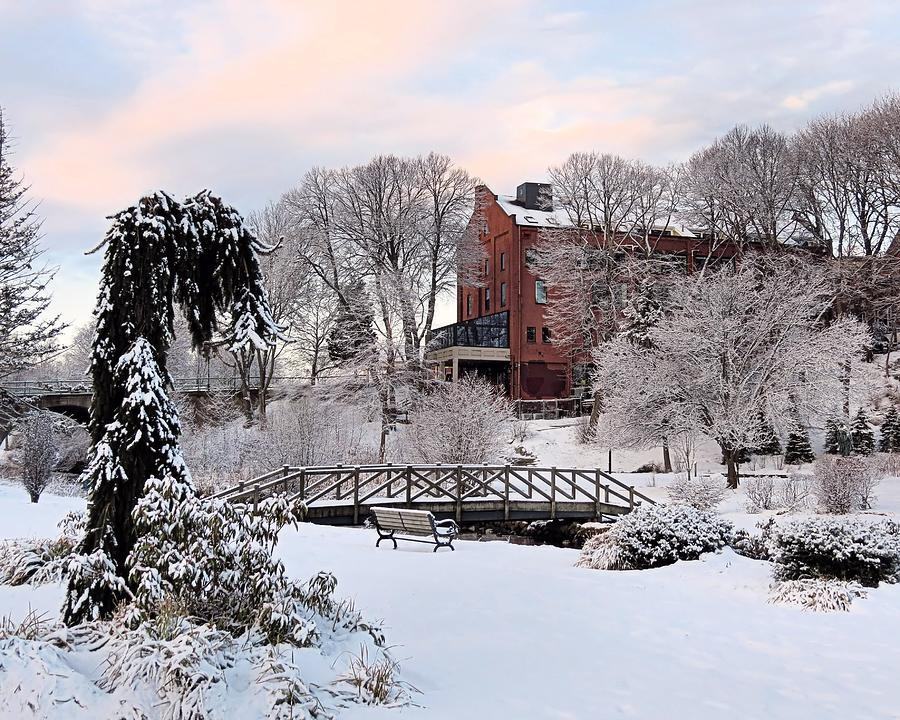 Winter Morning Photograph - Winter Morning Color by Janice Drew