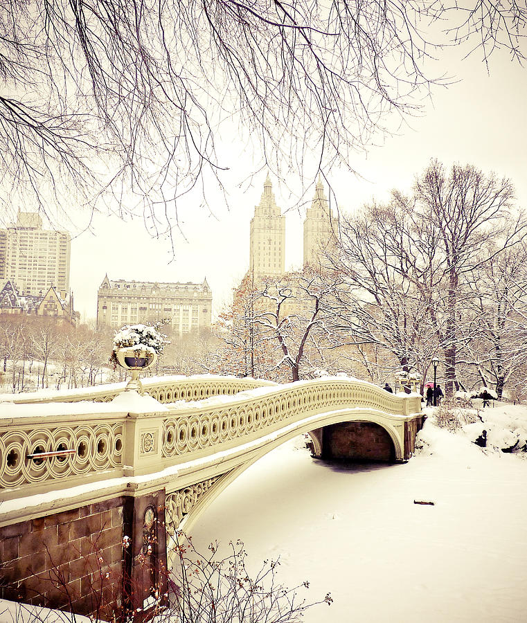 Central Park New York: Central Park Photograph By