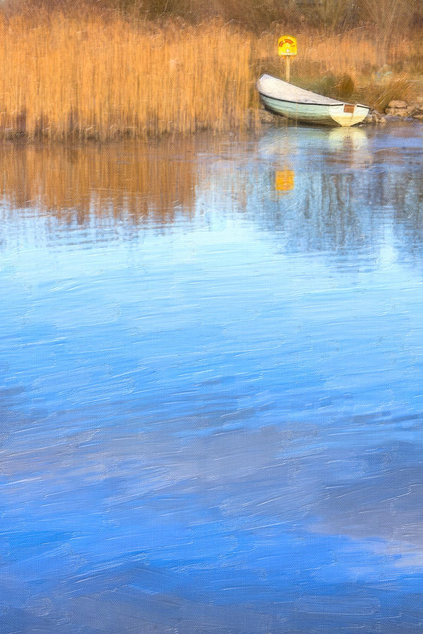 Galway Photograph - Winter On The Corrib In Galway by Mark Tisdale