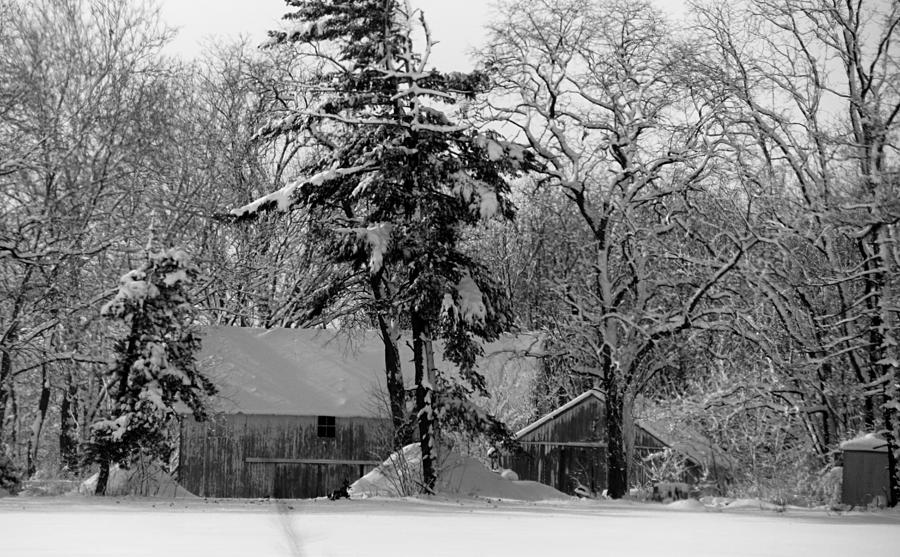 Winter Photograph - Winter On The Farm by Thomas Fouch
