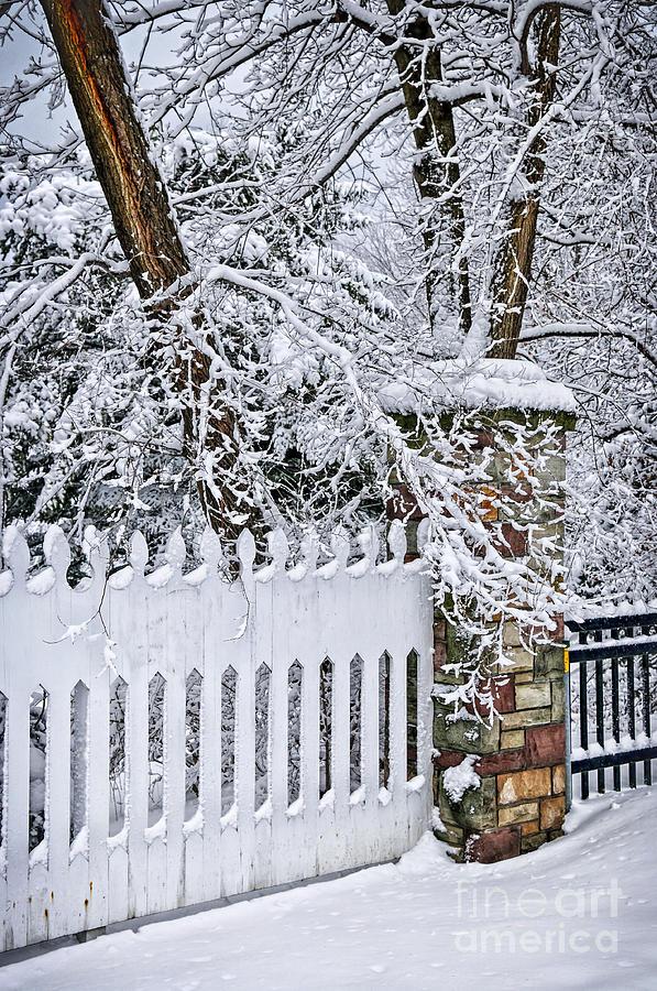 Winter Photograph - Winter Park Fence by Elena Elisseeva