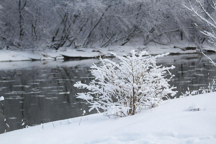 Landscape Photograph - Winter  by Paulina Szajek