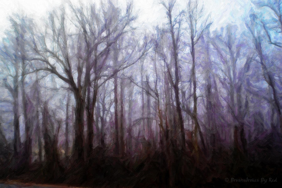 Winter Painting - Winter Rain by Melody McBride