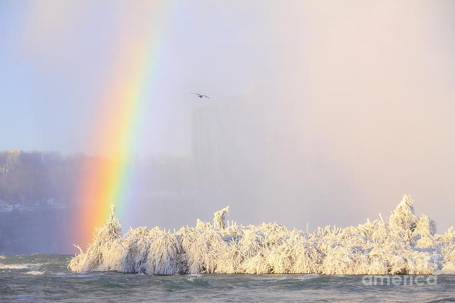 ппу картинка радуга зимой есть вопросы, задавайте