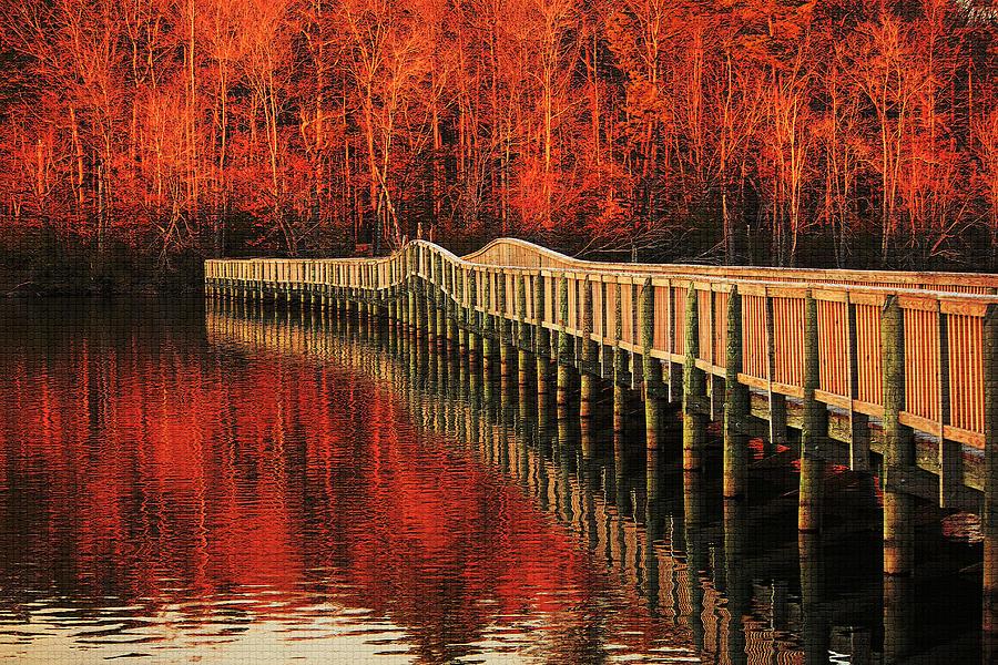 Winter Reds Photograph