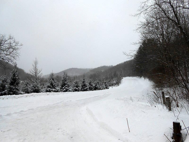 Winter Photograph - Winter Road by Dina  Stillwell