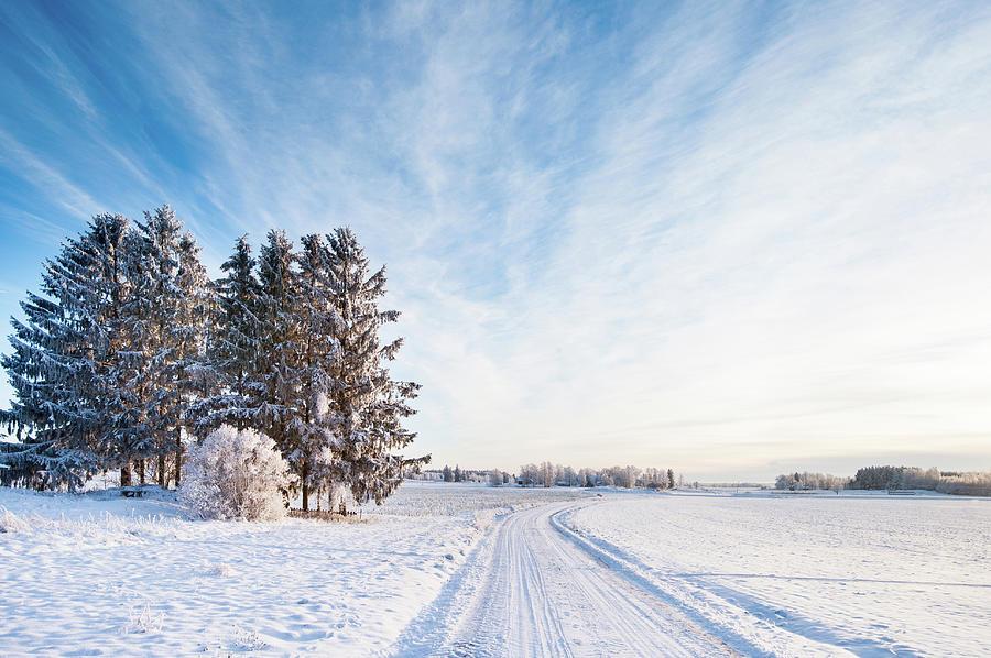 Winter Road Through Sweden Photograph by Lkpgfoto