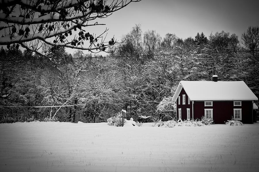 Winter Photograph - Winter by Robert Hellstrom