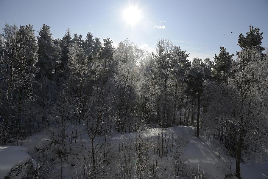 Fine Photograph - Winter Romance 3 by Teo SITCHET-KANDA