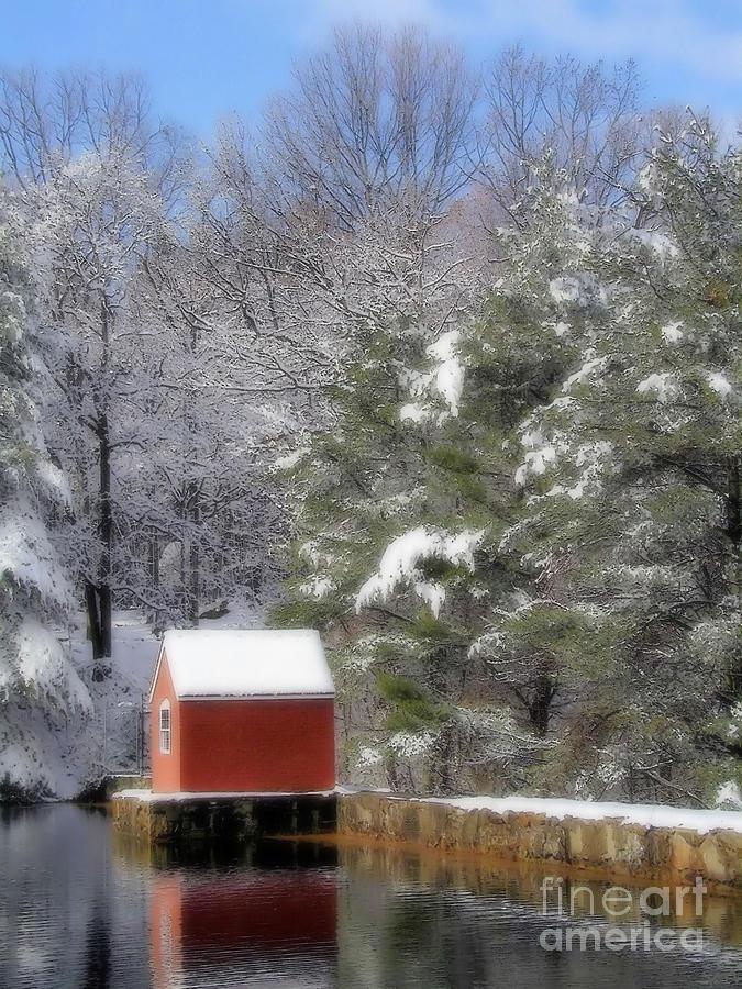 Winter Photograph - Winter Scene  by Karol Livote